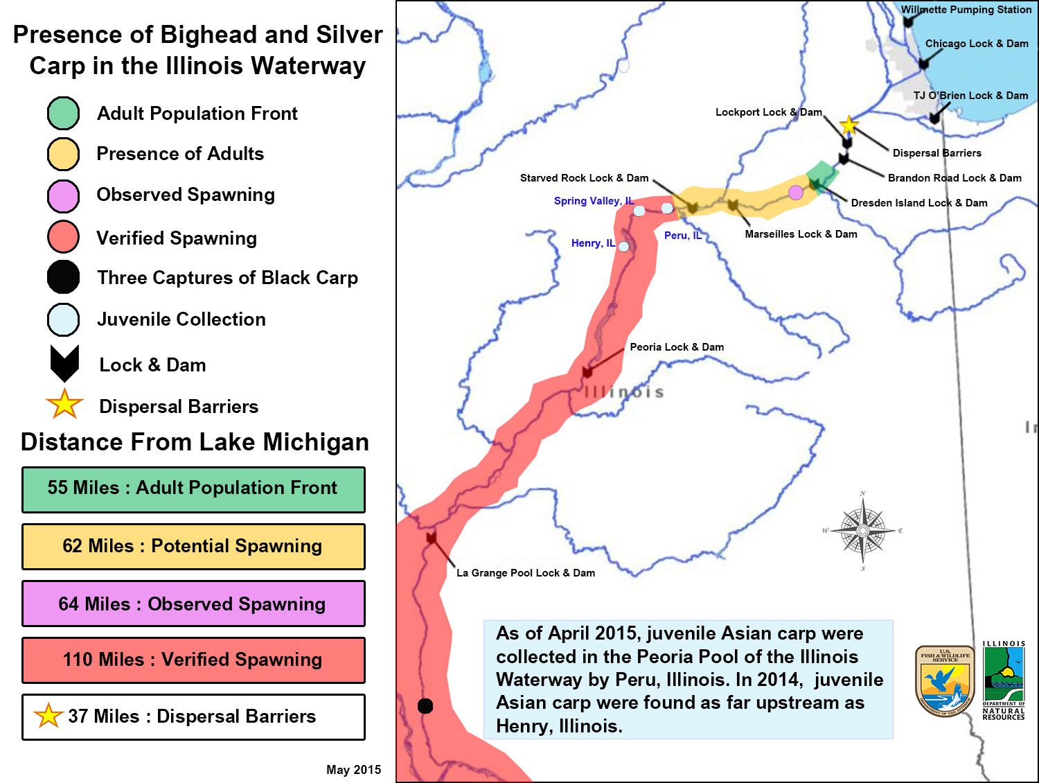 Updated Map On Location Of Bighead And Silver Carps In The Illinois - Il-on-us-map